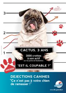 2015-06-affiche-dejections-cactus
