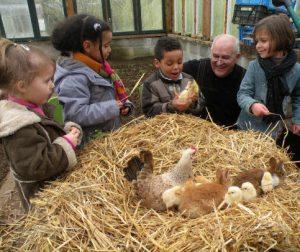 Les petits enfants d'André Le Guern, président de l'entente avicole et habitant à Ploumagoar aiment venir s'occuper des animaux de la basse cour